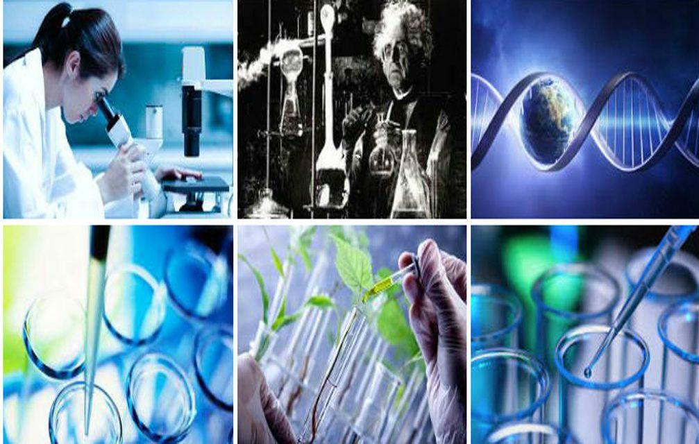 Brasil ocupa 13º lugar em publicações científicas