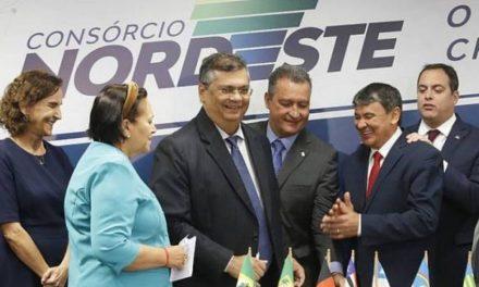 NORDESTE CRIA COMITÊ CIENTÍFICO