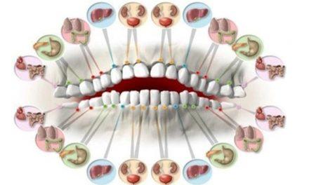Odontologia Integrativa: cura e manutenção começam pela boca