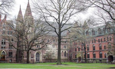 Yale: inscrições para mentoria a jovens cientistas brasileiros